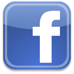 Carnet du web : page fan facebook