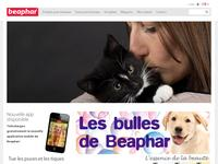 Anti puce pour animaux